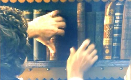 Dickinson, deuxième saison, cinquième épisode, détail (vue d'une bibliothèque)