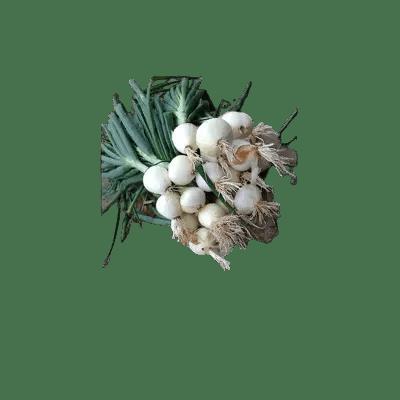 oninos