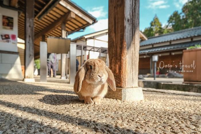 加賀景點|月うさぎの里到處都是萌兔子的月兔之里~免費入場~(可搭加賀周遊巴士到達)