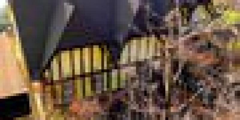 [OREO的旅行日記。台灣優質民宿] 清淨普羅旺斯玫瑰莊園~法國童話風格超讚民宿!!!