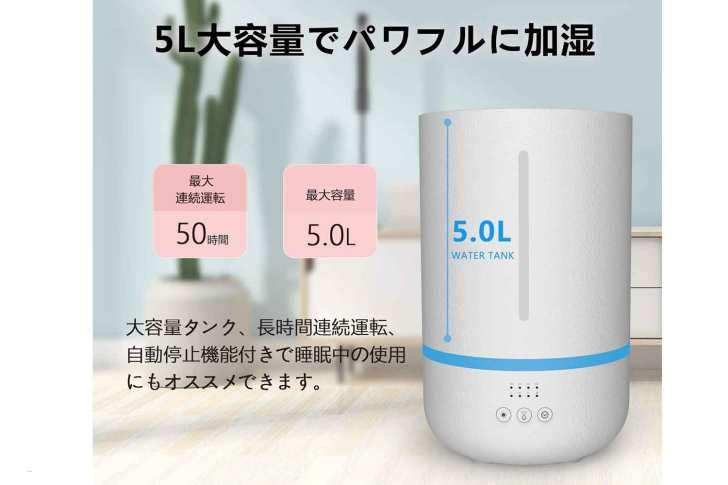 recommended-humidifier-zoea-2