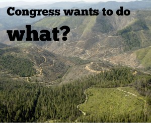 First, the Westerman bill would take away our laws, then our forests.