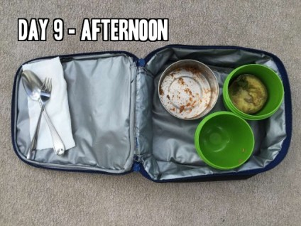 Day 9 afternoon school lunch idea