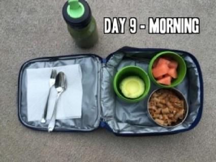 Day 9 school lunch idea
