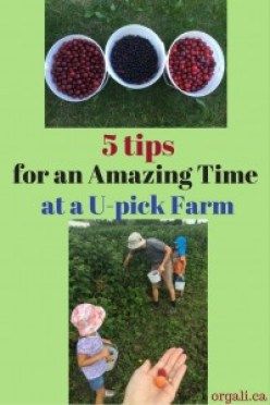 5 tips for an amazing time at a U-pick farm