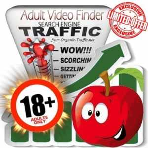 Buy Adultvideofinder.com Traffic