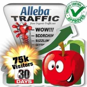 75k alleba search traffic visitors 30days