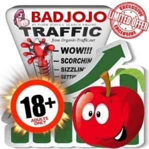 Buy Badjojo.com Traffic