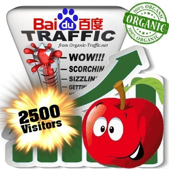 2500 baidu organic traffic visitors