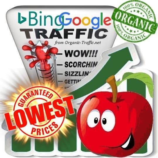 Buy Bing & Google Web traffic