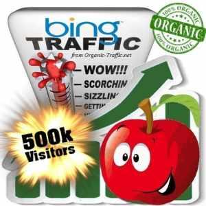 bing organic traffic visitors