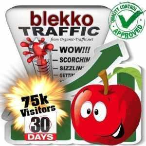 blekko search traffic visitors 30days 75k