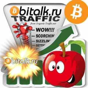 Buy Bitalk.ru Traffic Visitors