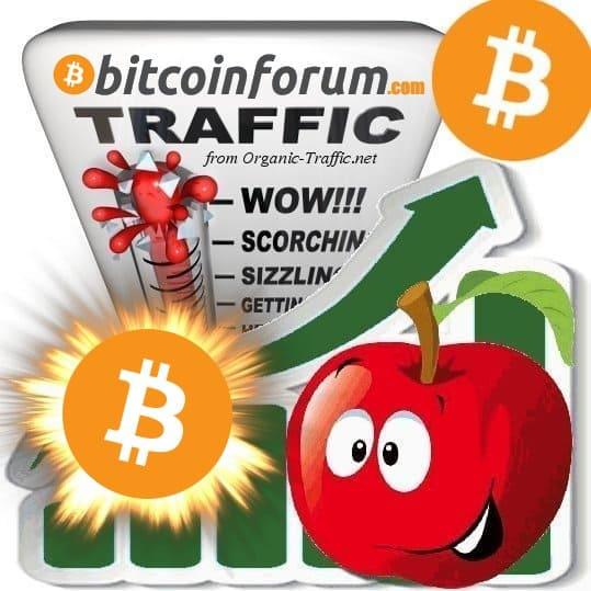 Buy BitcoinForum.com Traffic Visitors