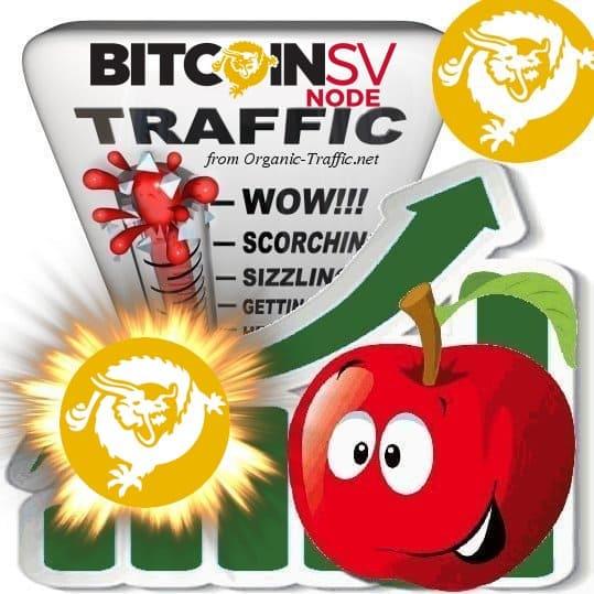 Buy BitcoinSV.io Traffic Visitors