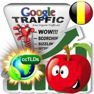 buy google belgium organic traffic visitors