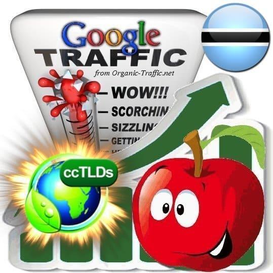 buy google botswana organic traffic visitors
