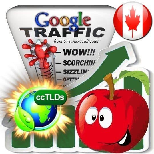 buy google canada organic traffic visitors