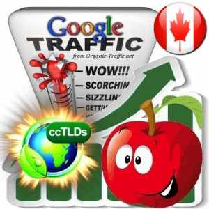 buy google canada organic traffic visitors
