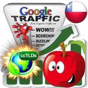 buy google chile organic traffic visitors