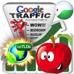 buy google djibouti organic traffic visitors