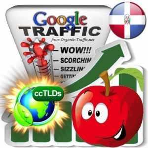 buy google dominican republic organic traffic visitors