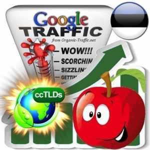 buy google estonia organic traffic visitors