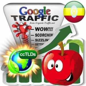 buy google ethiopia organic traffic visitors