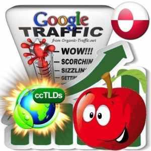 buy google greenland organic traffic visitors