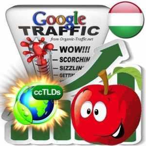buy google hungary organic traffic visitors