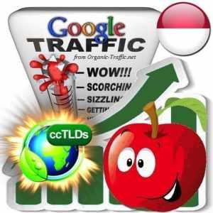 buy google indonesia organic traffic visitors