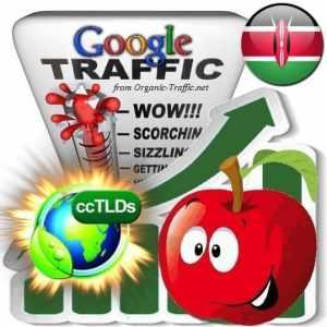 buy google kenya organic traffic visitors