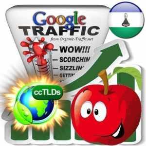 buy google lesotho organic traffic visitors