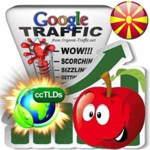 buy google macedonia organic traffic visitors