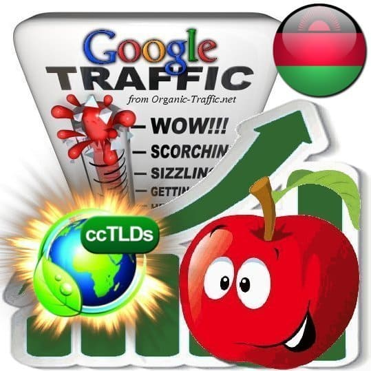 buy google malawi organic traffic visitors
