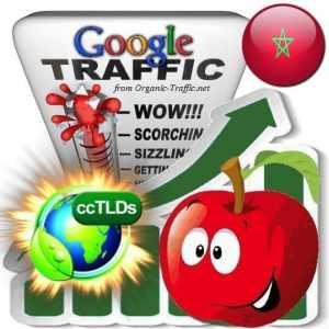 buy google morocco organic traffic visitors