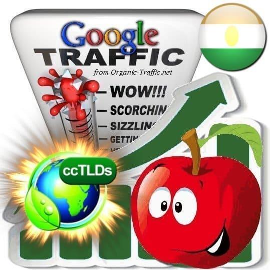 buy google niger organic traffic visitors