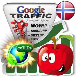 buy google norway organic traffic visitors