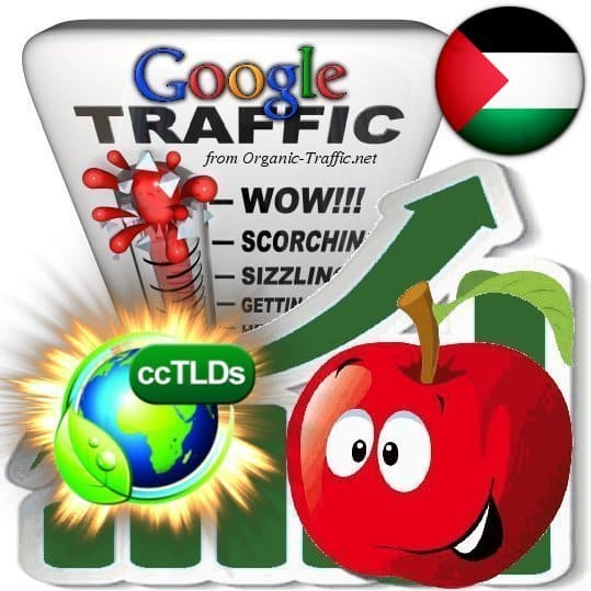 buy google palestine organic traffic visitors