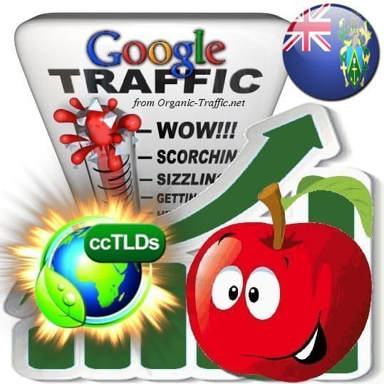 buy google pitcairn islands organic traffic visitors