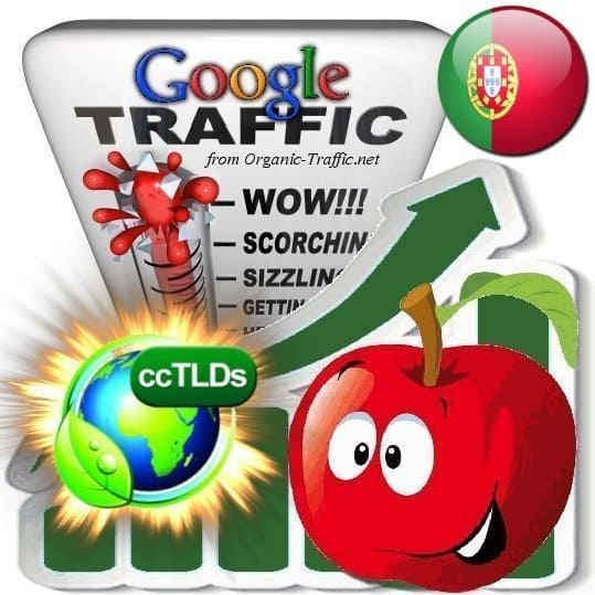 buy google portugal organic traffic visitors