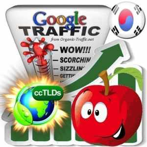 buy google south korea organic traffic visitors