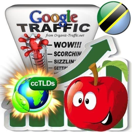 buy google tanzania organic traffic visitors