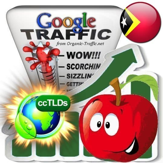 buy google timor-leste organic traffic visitors