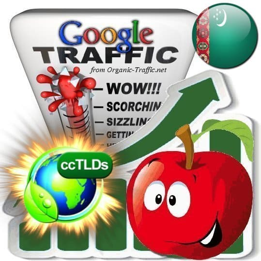 buy google turkmenistan organic traffic visitors