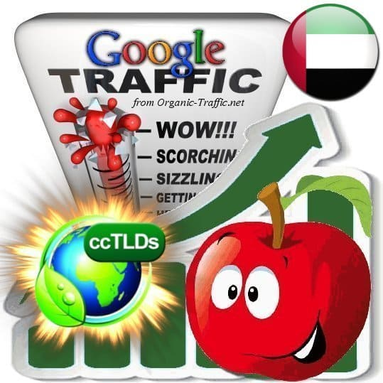 buy google uae organic traffic visitors