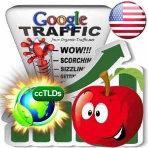 buy google united states organic traffic visitors