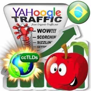Buy Google & Yahoo Brazil Webtraffic