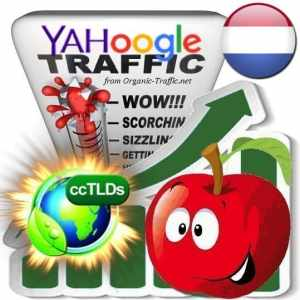 Buy Google & Yahoo Netherlands Webtraffic