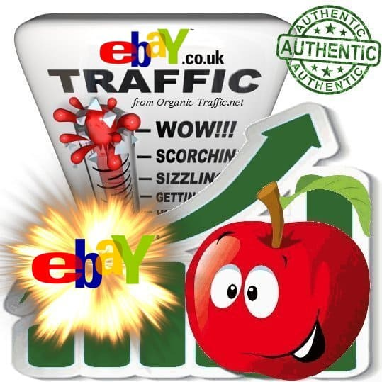 Buy Website Traffic Visitors From Ebay Co Uk Buy Website Traffic Service